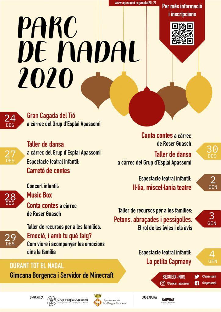 Cartell Nadal Apassomi 2020